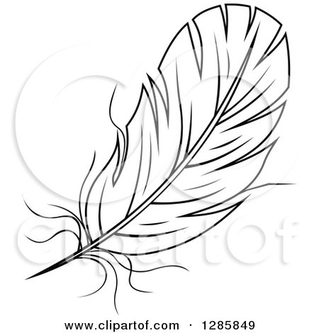 Clipart of a Black and White Feather 10 - Royalty Free Vector Illustration by Vector Tradition SM