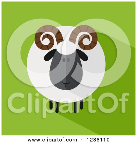 Clipart of a Modern Flat Design Round Fluffy Black Ram Sheep with a Shadow on Green - Royalty Free Vector Illustration by Hit Toon