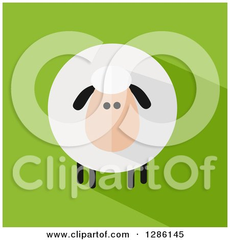 Clipart of a Modern Flat Design Round Fluffy Sheep with a Shadow on Green - Royalty Free Vector Illustration by Hit Toon