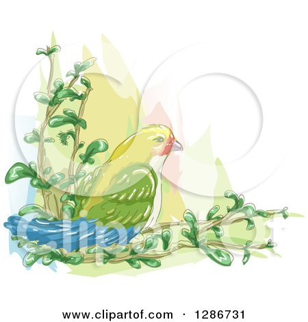 Clipart of a Watercolor of a Love Bird on Branches - Royalty Free Vector Illustration by BNP Design Studio