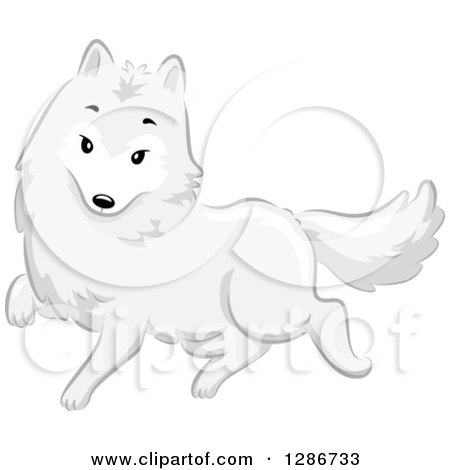 Clipart of a Cute White Arctic Fox Walking - Royalty Free Vector Illustration by BNP Design Studio