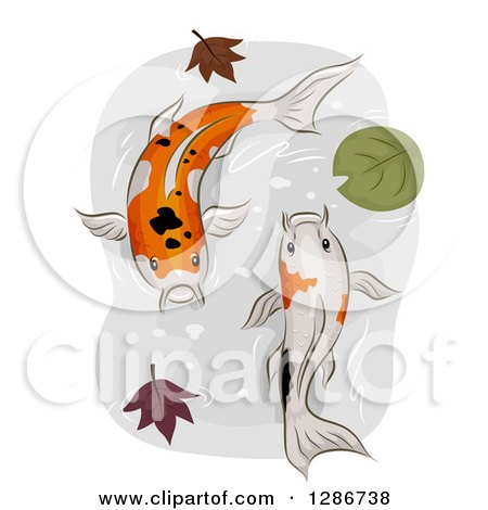 Clipart of a Pair of Calico Koi Fish Swimming in a Pond with Autumn Leaves and a Lily Pad - Royalty Free Vector Illustration by BNP Design Studio