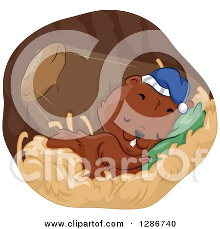 Clipart of a Cute Rodent Sleeping in a Burrow with Light Shining in - Royalty Free Vector Illustration by BNP Design Studio