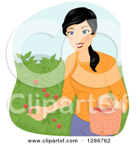 Clipart of a Happy Asian Woman Picking Raspberries from a Bush - Royalty Free Vector Illustration by BNP Design Studio
