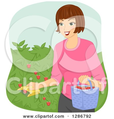 Clipart of a Happy Brunette White Woman Using a Fruit Picker to Collect Strawberries from a Bush - Royalty Free Vector Illustration by BNP Design Studio