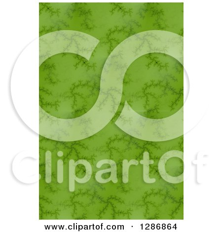 Clipart of a Seamless Background of Green Fractals - Royalty Free Illustration by oboy