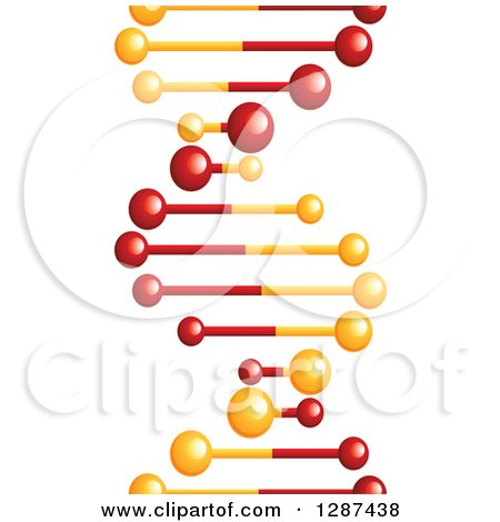 Clipart of a Red and Gold Dna Double Helix Cloning Strand with Balls at the Tips - Royalty Free Vector Illustration by Vector Tradition SM