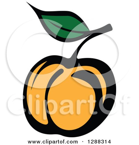 Clipart of a Peach or Apricot - Royalty Free Vector Illustration by Vector Tradition SM