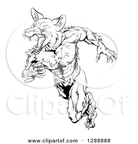 Clipart of a Black and White Muscular Fox Man Sprinting - Royalty Free Vector Illustration by AtStockIllustration