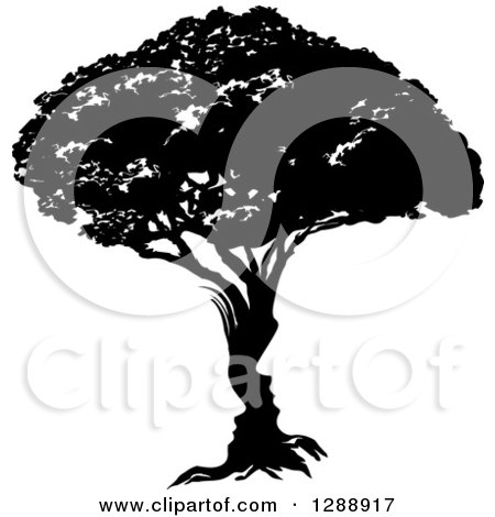 Clipart of a Black and White Silhoeutted Mature Tree - Royalty Free Vector Illustration by AtStockIllustration