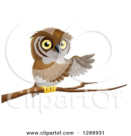 Perched Owl Presenting with His Wings from a Tree Branch Posters, Art Prints