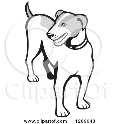 Clipart of a Retro Grayscale Cartoon Jack Russell Terrier Dog - Royalty Free Vector Illustration by patrimonio
