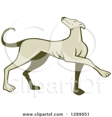 Clipart of a Retro Cartoon Greyhound Dog Marching - Royalty Free Vector Illustration by patrimonio