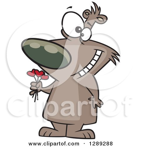 Holiday Clipart of a Valentines Day Bruin Brown Bear Holding a Heart Bouquet - Royalty Free Vector Illustration by toonaday