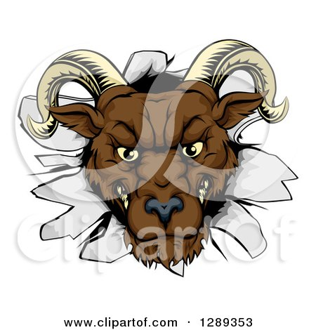 Clipart of a Brown Snarling Angry Ram Breaking Through a Wall - Royalty Free Vector Illustration by AtStockIllustration