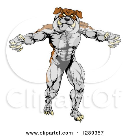 Clipart of a Muscular Brown and Gray Bulldog Monster Man Mascot Standing Upright - Royalty Free Vector Illustration by AtStockIllustration