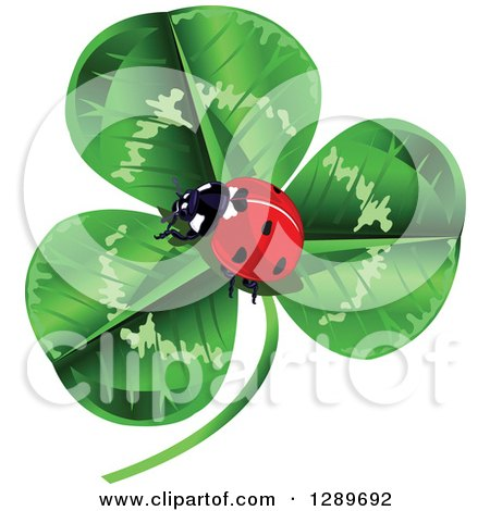 Clipart of a Lady Bug Nestled in the Center of a Green Shamrock Clover - Royalty Free Vector Illustration by Pushkin