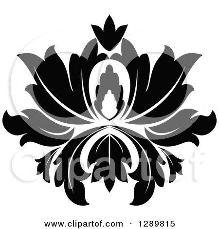 Lotus Design Gallery