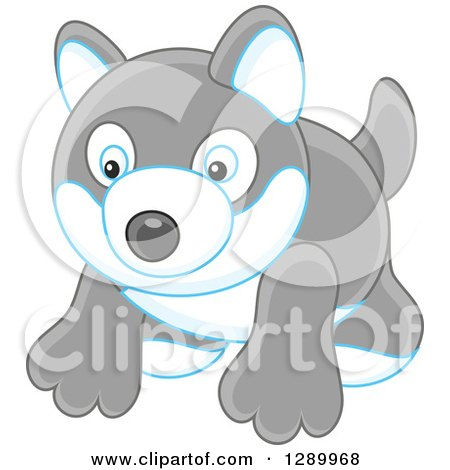 Clipart of a Gray Toy Husky Dog - Royalty Free Vector Illustration by Alex Bannykh