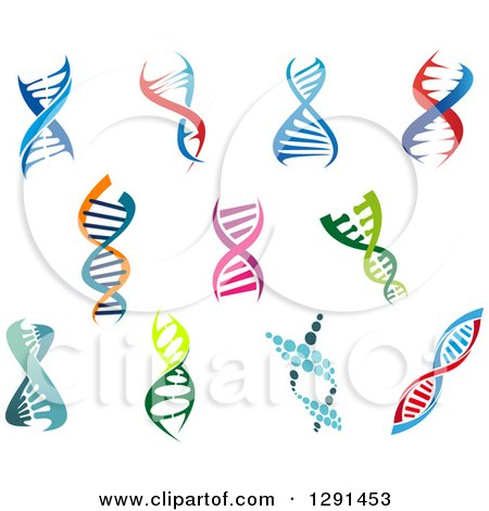 Clipart of Colorful Dna Double Helix Cloning Strands - Royalty Free Vector Illustration by Vector Tradition SM