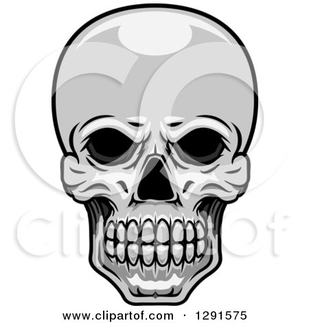 Clipart of a Grayscale Human Skull - Royalty Free Vector Illustration by Vector Tradition SM