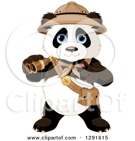 Clipart of a Cute Explorer Expedition Panda Holding Binoculars - Royalty Free Vector Illustration by Pushkin