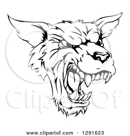 Clipart of a Black and White Vicious Snarling Wolf Mascot Head - Royalty Free Vector Illustration by AtStockIllustration