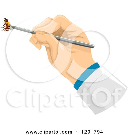 Clipart of a Doctor's Hand Holding a Bee for Venom Therapy - Royalty Free Vector Illustration by BNP Design Studio