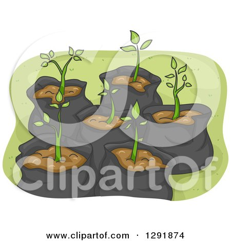 Clipart of Sapling Plants in Garbage Bags - Royalty Free Vector Illustration by BNP Design Studio
