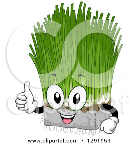 Clipart of a Cartoon Happy Wheatgrass Character Holding a Thumb up - Royalty Free Vector Illustration by BNP Design Studio