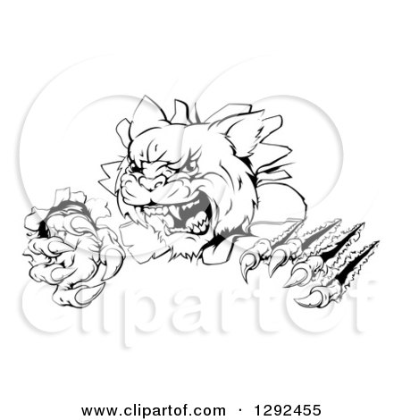 Clipart of a Black and White Wild Cat Slashing Through a Wall - Royalty Free Vector Illustration by AtStockIllustration