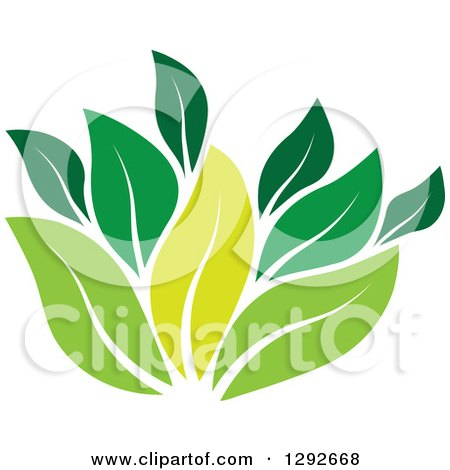 Clipart of a Group of Green Leaves - Royalty Free Vector Illustration by ColorMagic