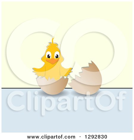 Clipart of a Happy Yellow Chick in a Broken Egg over Pastel Blue and Green - Royalty Free Vector Illustration by elaineitalia
