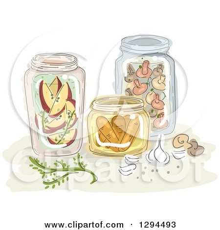 Clipart of Sketched Jars of Canned Apples, Mushrooms and Carrots - Royalty Free Vector Illustration by BNP Design Studio