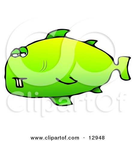 Green Buck Toothed Fish Clipart Graphic Illustration by djart