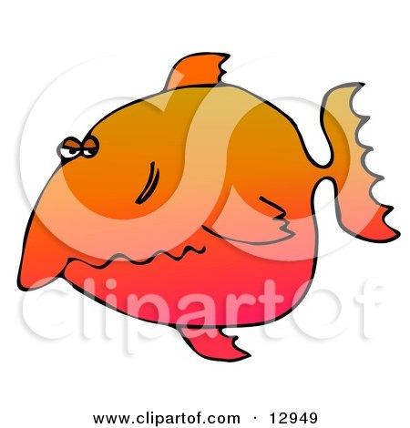Unhappy Orange Fish Clipart Graphic Illustration by djart