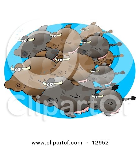 Group of Schooling Cow Fish Clipart Graphic Illustration by djart