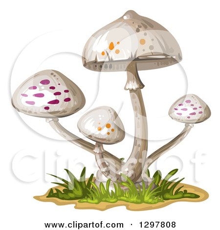 Clipart of White Spotted Mushrooms - Royalty Free Vector Illustration by merlinul