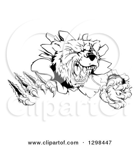 Clipart of a Black and White Roaring Grizzly Bear Mascot Head ...