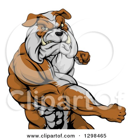 Clipart of a Snarling Muscular Bulldog Man Punching - Royalty Free Vector Illustration by AtStockIllustration