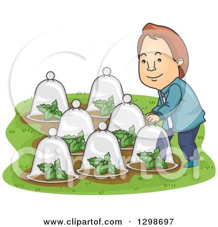Clipart of a Cartoon Brunette White Man Putting Glass Dome Cloches over His Plants in His Garden - Royalty Free Vector Illustration by BNP Design Studio