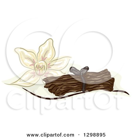 Clipart of a Vanilla Flower and Stalks - Royalty Free Vector Illustration by BNP Design Studio