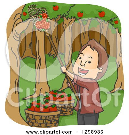 Clipart of a Cartoon Happy Brunette White Man Picking Apples in an Orchard - Royalty Free Vector Illustration by BNP Design Studio