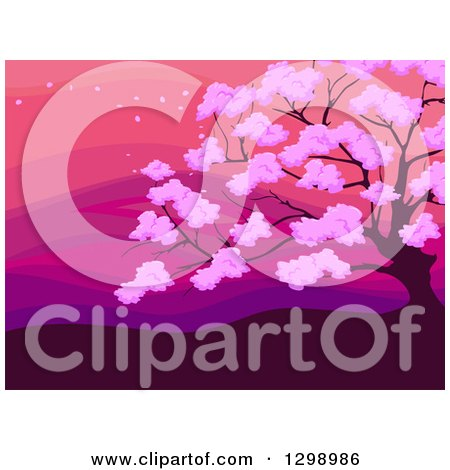 Clipart of a Blossoming Cherry Tree Against a Pink and Purple Sunset - Royalty Free Vector Illustration by BNP Design Studio