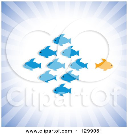 Clipart of a Different Orange Fish Going in a Different Direction Than a School of Blue Fish, over Rays - Royalty Free Vector Illustration by ColorMagic
