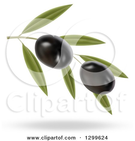 Clipart of a 3d Branch with Two Black Olives and a Shadow - Royalty Free Illustration by cidepix