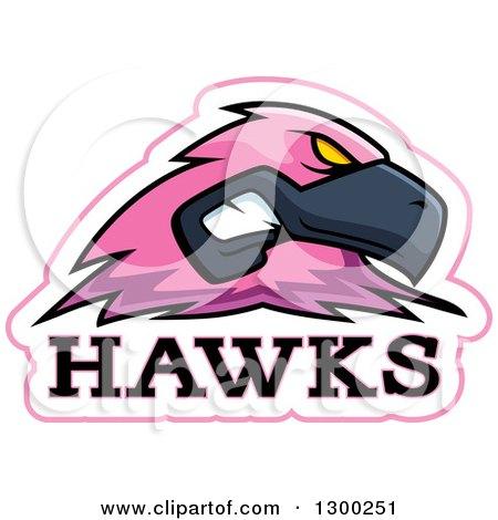 Royalty-Free (RF) Hawk Mascot Clipart, Illustrations, Vector ...