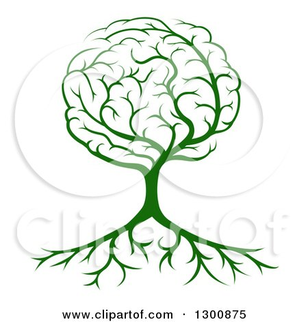 Clipart of a Green Tree with a Brain Canopy and Roots - Royalty Free Vector Illustration by AtStockIllustration