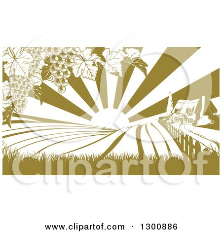 Clipart of a Winery Farm House and Rolling Hills with Vineyard Grape Vines and Sun Rays in Green and White - Royalty Free Vector Illustration by AtStockIllustration