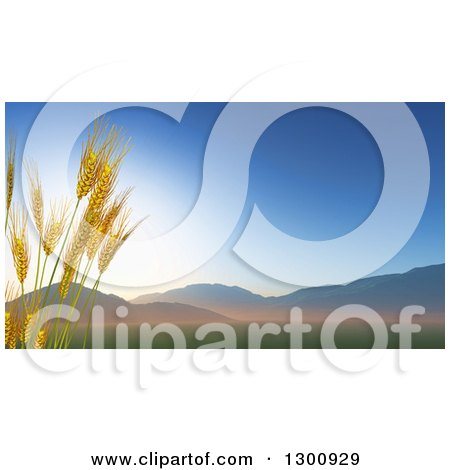 Clipart of 3d Stalks of Wheat Against a Valley at Sunrise - Royalty Free Illustration by KJ Pargeter